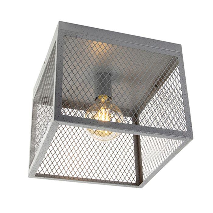 Βιομηχανική-λάμπα-οροφής-από-ασήμι---Cage-Robusto